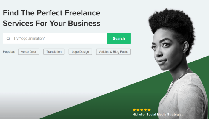 Fiverr overview1