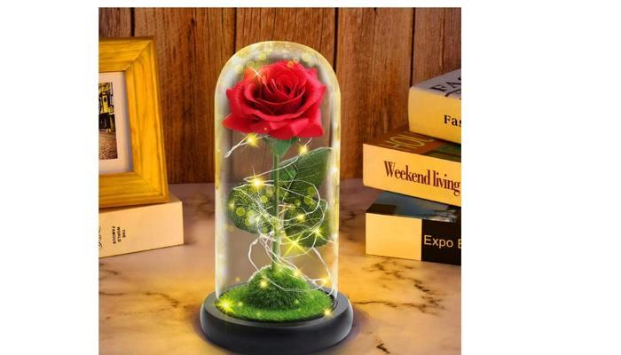 Valentine day gift for girlfriend