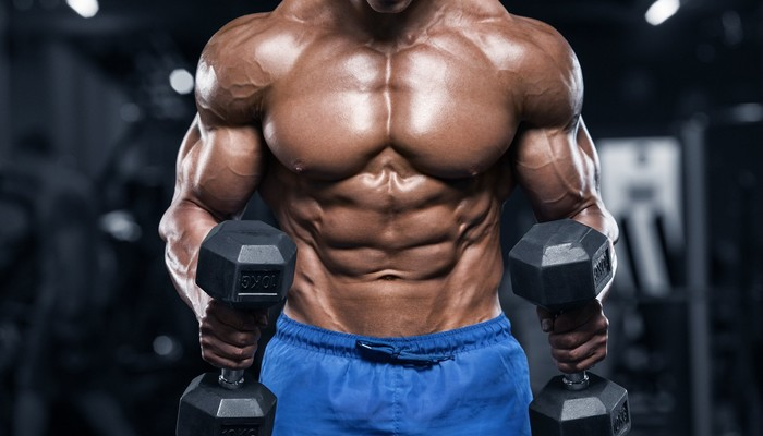 Muscles power strength dumbbell bodybuilder