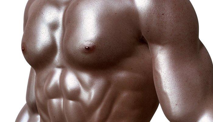 Bodybuilder 331670 1920